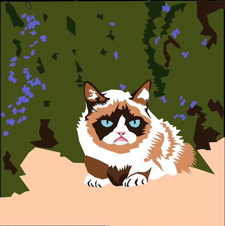 Grumpy Cat cartoon