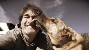 Why do dogs kiss you?